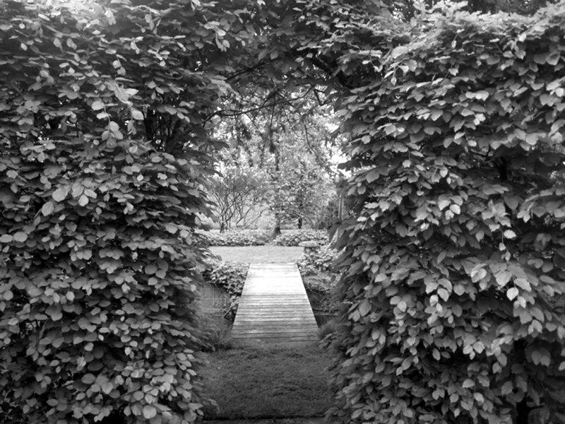 Hedge-opening