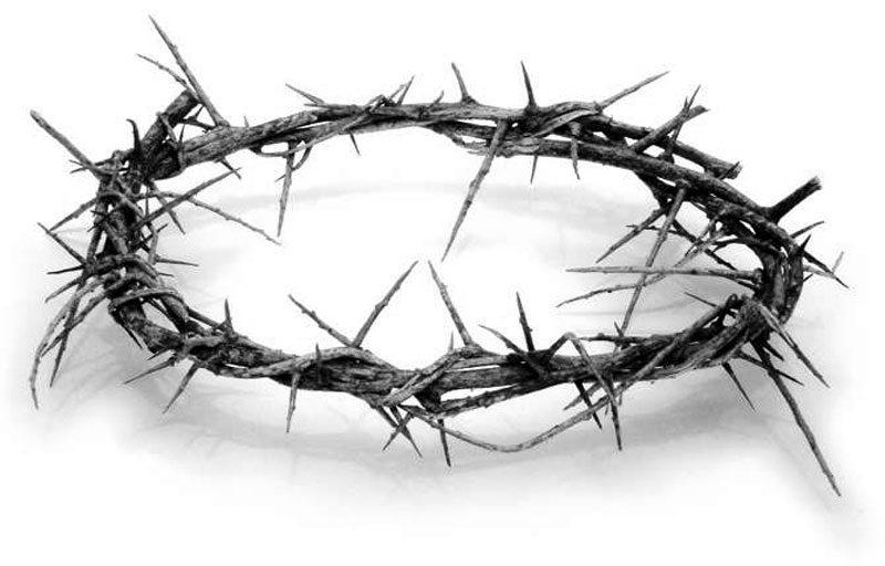 crown-of-thorns-lg